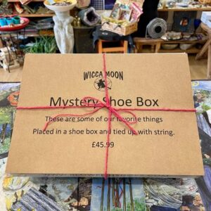 The Mystery Shoe Box!