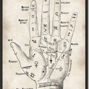 Palmistry Workshop